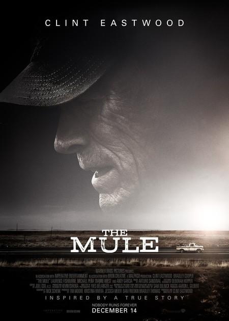 THE MULE (ORIGINAL LANGUAGE)